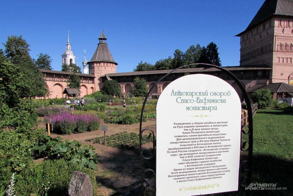 Аптекарский огород Спасо-Евфимиева монастыря в Суздале.