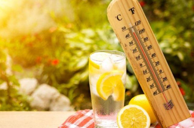 Врачи рассказали, как правильно питаться в жару.
