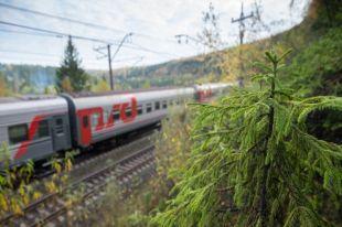 Как изменится еда в российских поездах?