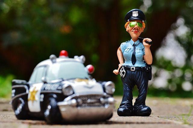 Полицейские установили подозреваемого в совершении кражи