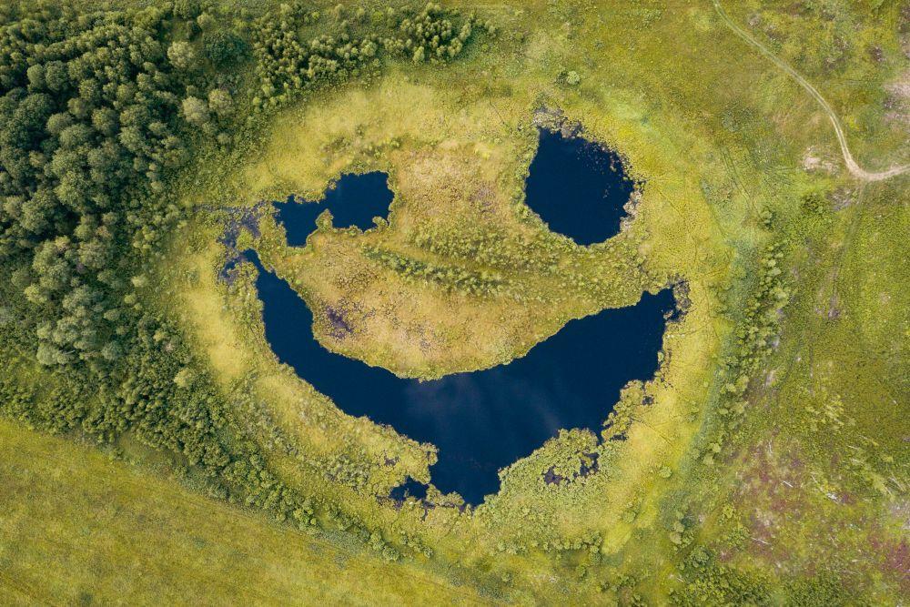 Название: Болото-смайлик. Номинация: Природа. Описание: Озёра метеоритного происхождения во Владимирской области. Автор: Белавин Андрей