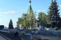 Нижегородцы любили ели в кремле, но биологи признали деревья подлежащими сносу.