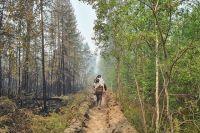 С сегодняшнего дня для создания противопожарных разрывов между Намским и Горным районом начнут использовать взрывчатку для предупреждения распространения огня по земле.