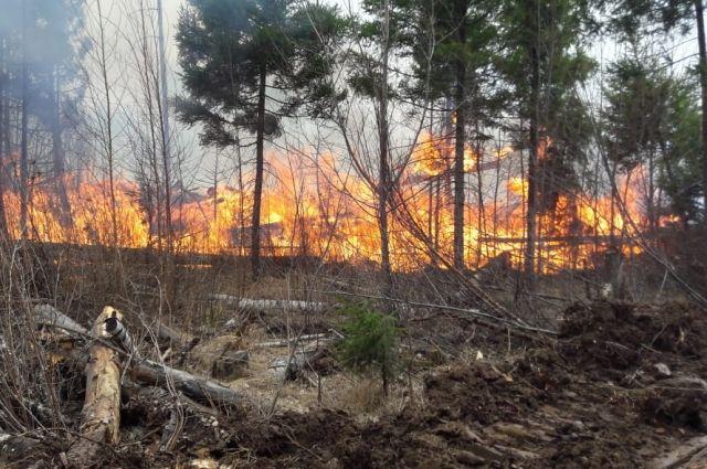 С применение авиации обнаружено 38 лесных пожаров.