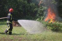 Огнеопасно. Почему загорелась «Хортица» и как штрафуют поджигателей леса