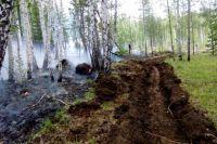 За сутки в регионе ликвидировано 14 природных очагов огня.