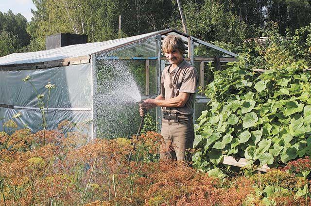 Каждый огородник должен знать, что растёт на его участке