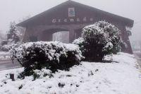 Аномальное похолодание: самый южный штат Бразилии засыпало снегом