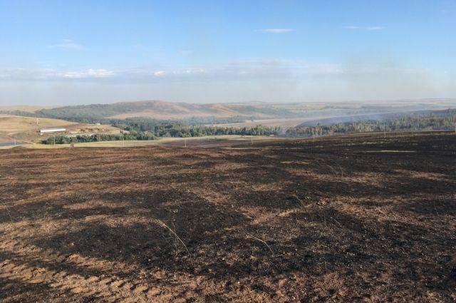 За сутки выгорело свыше 100 га сухой травы
