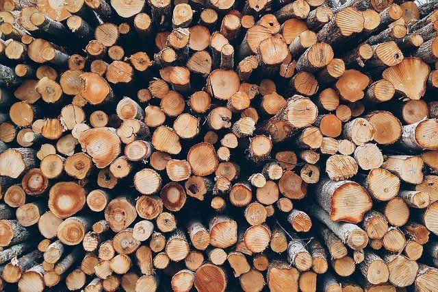 Покупатель рассчитался за 8 кубов древесины из воздуха