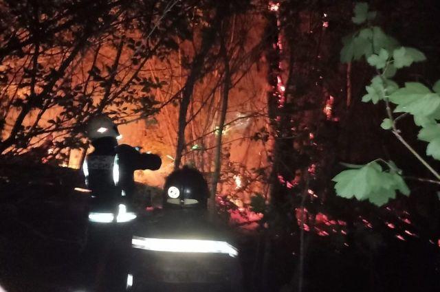 В Оренбурге удалось локализовать пожар в Протопоповской роще.