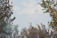 В Оренбурге из-за пожара в Протопоповской роще введен режим ЧС.