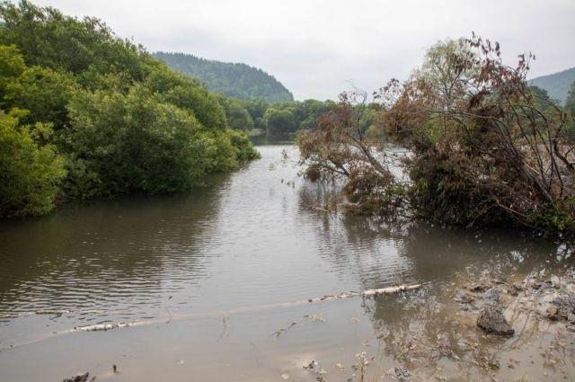 О загрязнениях водоемов теперь можно сообщить на портал Сахалин.онлайн.