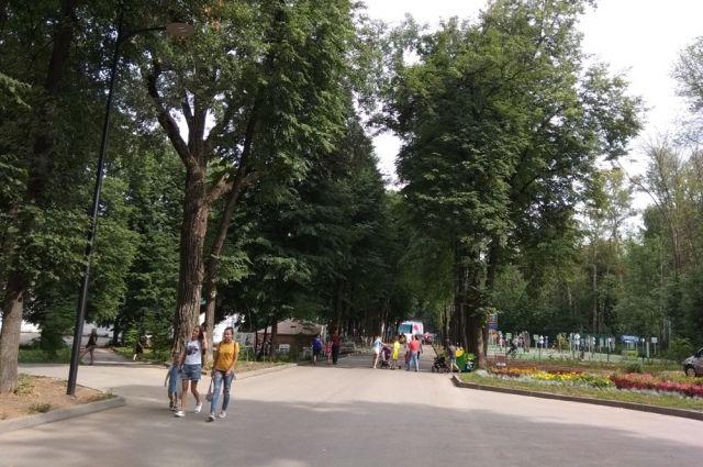 После завершения всех работ по благоустройству парк стал более комфортным и для дневных, и для вечерних прогулок.