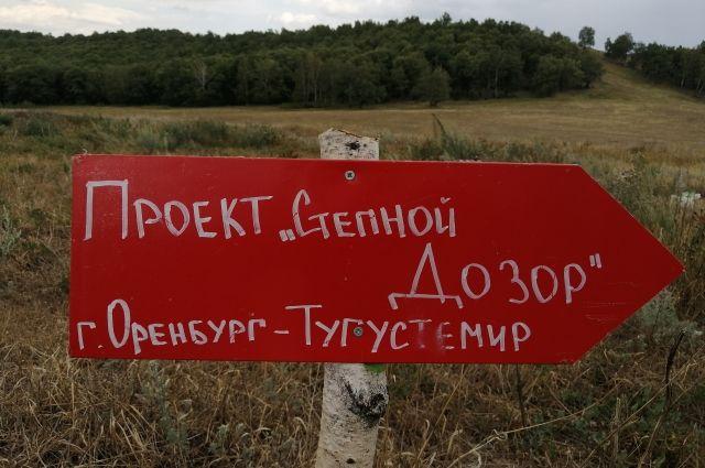 Найти красную стрелочку: в Оренбуржье юнармейцы установили в лесах новые указатели для заблудившихся.