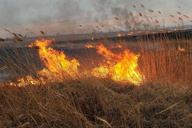 МЧС Оренбуржья сообщает о новом очаге возгорания у поселка 9 Января.