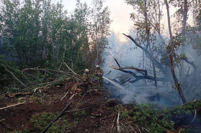 В Оренбурге с пожаром в Протопоповской роще борются уже четвертый день.
