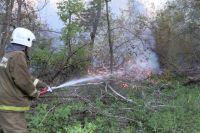 Пожарные ликвидировали все крупные очаги возгорания возле села 9 Января.