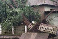 Сорванные крыши и вывернутые деревья: в Одесской области пронесся ураган