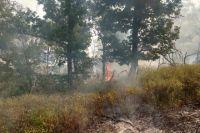 На крупном пожаре в Кувандыкском ГО увеличена группировка сил МЧС.