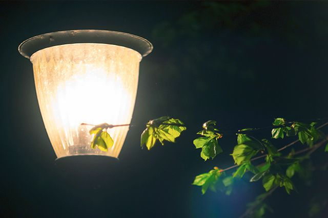 Отсутствие освещения на улице Красина в Оренбурге довело жителей до отчаяния.
