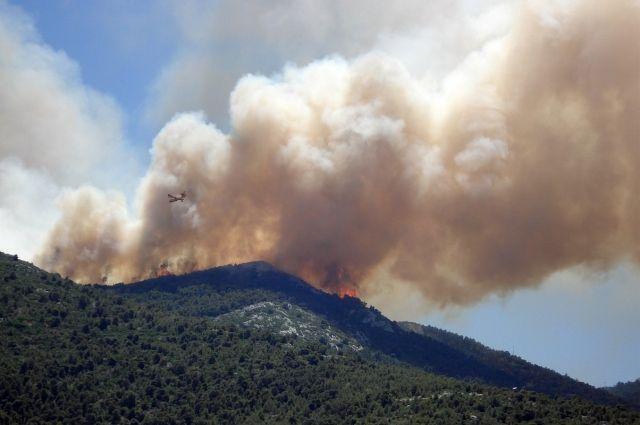 В двух районах Башкирии продолжает гореть лес на общей площади 30 га