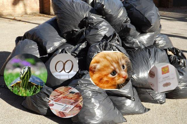 Котята, черепаха, деньги, свадебные украшения, паспорта... Все это находили на заводе мусоросортировки.