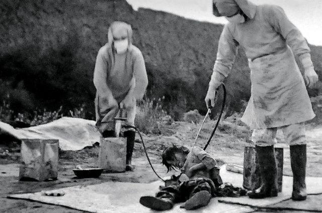 Персонал подразделения 731 заражает бубонной чумой китайских жителей. Маньчжурия 1940 г.