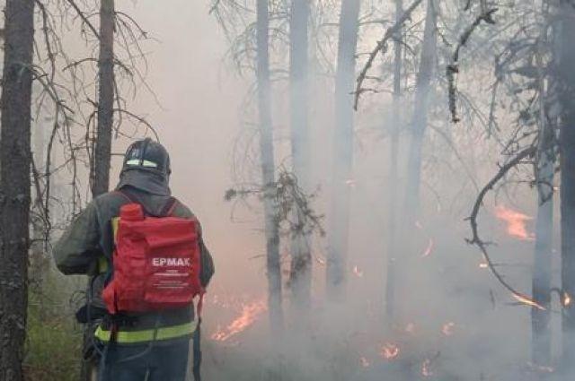 Площадь лесных пожаров в Башкирии сократилась до 1,1 тыс. га