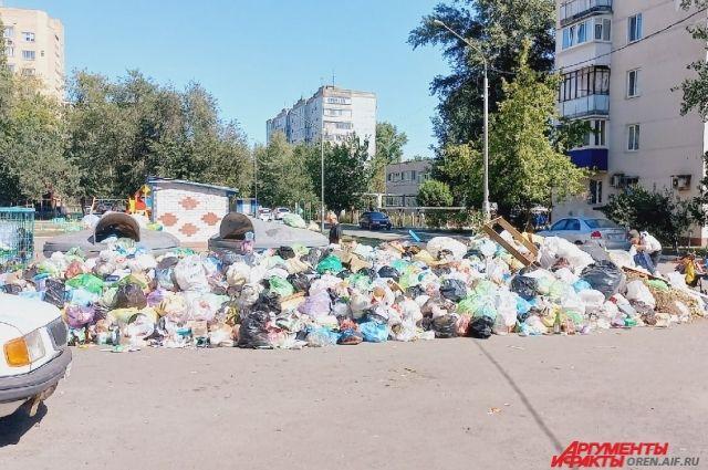 В Оренбурге на улице Новой запах с заваленной мусорки расносится по детским площадкам и по территории садика.