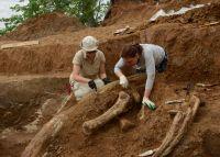 Раскопки в Оханском районе продолжались несколько лет.