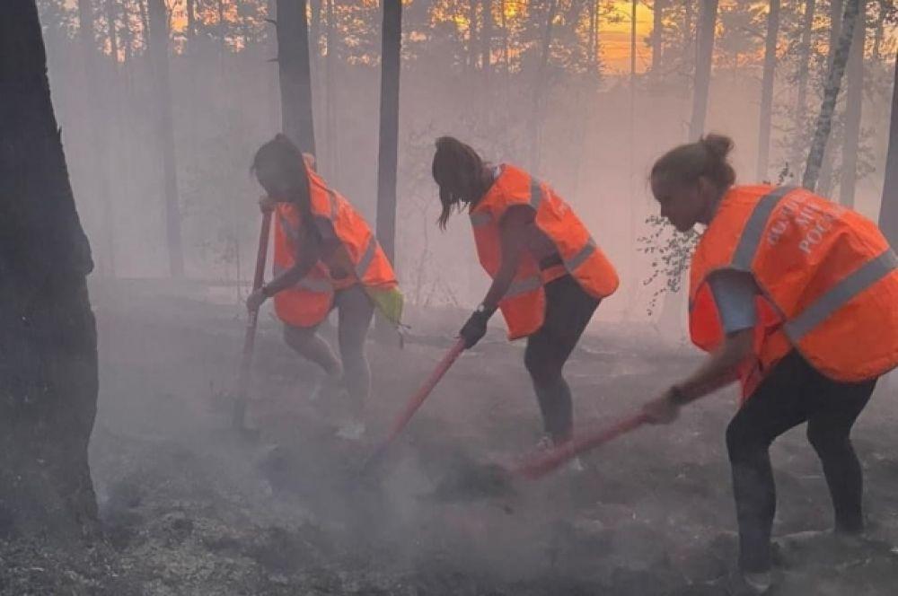 Волонтеры проводят противопожарную опашку.