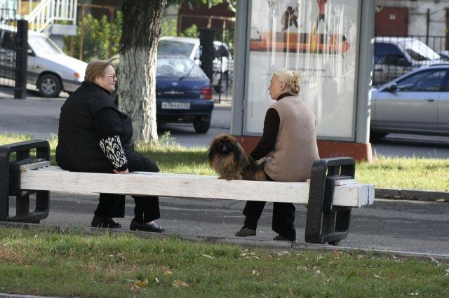 Минимальная пенсия в регионе - 9782 рубля.