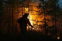Тушение лесного пожара в Якутии.