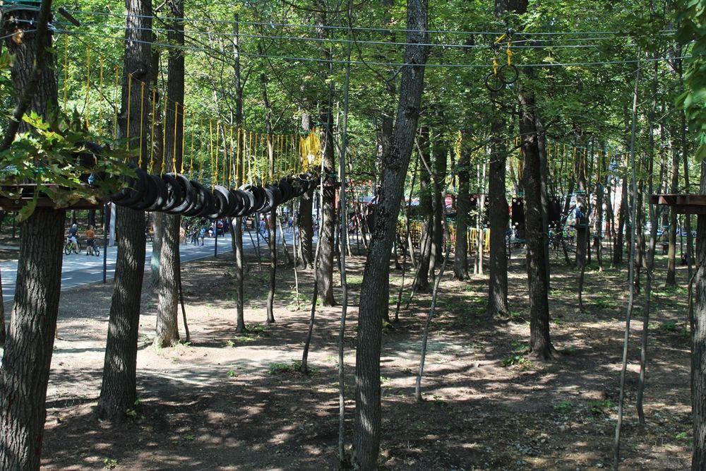 Протяженность веревочного парка составляет почти 900 метров.