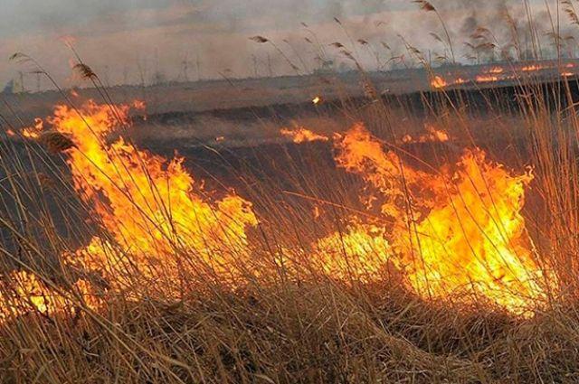 С крупным природным пожаром под Кувандыком боролись 58 человек и 17 единиц техники.
