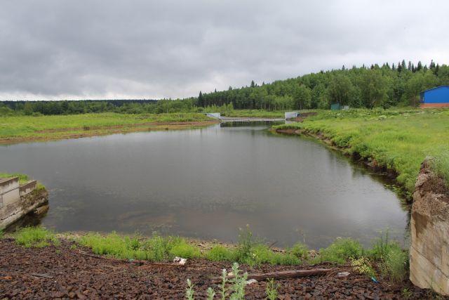 Чистую воду в Тайге очень ждали.