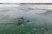 В Харьковской области действия чиновников привели к загрязнению реки