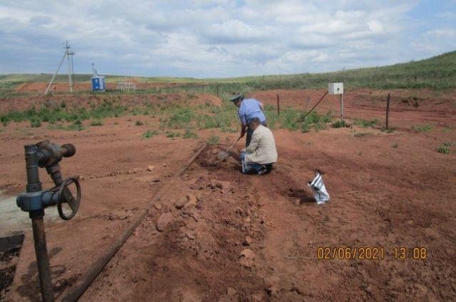 В Оренбуржье компания заплатит штраф за уничтожение сельхозземель разлившейся нефтью.