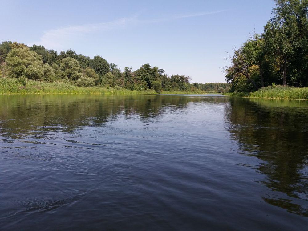 Бобровский район, река Битюг.