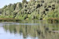 Заплыл за буйки: из реки Чаган в Оренбуржье извлеки тело 49-летнего мужчины.