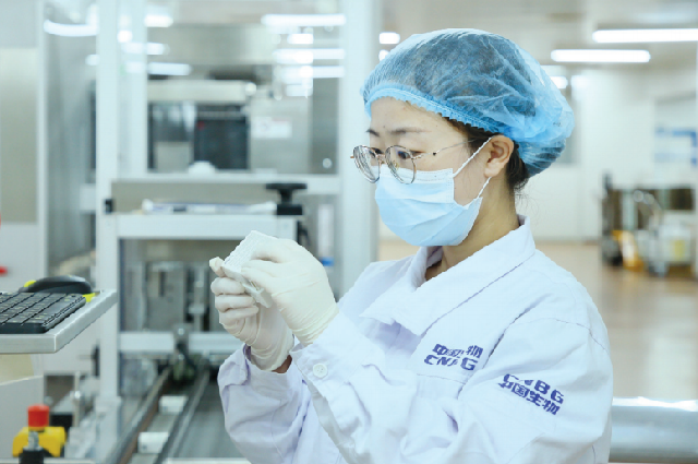 Сотрудник Пекинского института биологических продуктов Co Ltd проверяет вакцины от COVID-19.