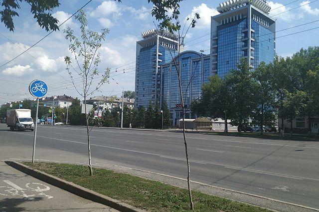 Молодые саженцы между остановками «Горсовет» и «Юрюзань».
