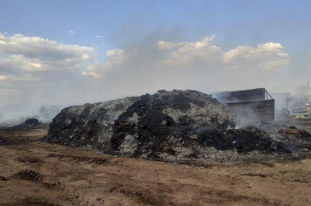 В Оренбуржье огонь уничтожил 25 коров и 350 центнеров сена.