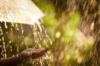 Прогноз погоды в Украине на 30 августа: местами пройдут дожди.