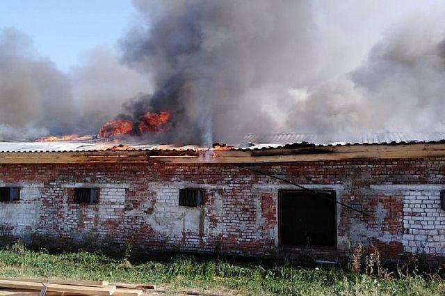 В Оренбургской области пожарные тушат здание птицефабрики.