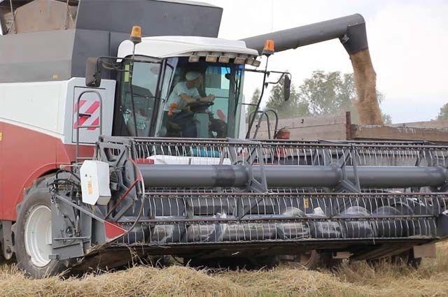 26 августа о завершении уборки зерновых отчитались восемь сельских районов.