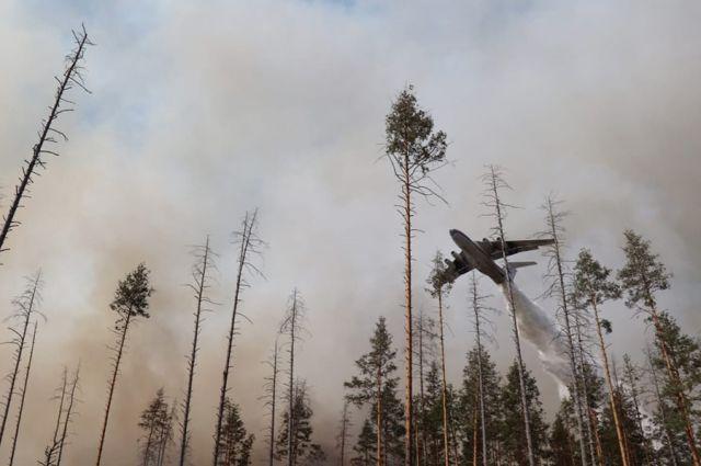 Со многими крупными природными пожарами уже справились спасатели и осенние дожди.