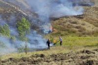 Пожарные тушат возгорание леса и сухой травы на участке перегона станций Каргала-Газовая ЮУЖД.