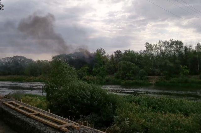 Горит сухая трава: в МЧС установили источник черного дыма в Зауральной роще Оренбурга.